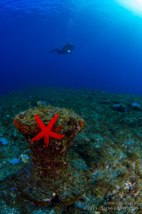 Misteriosa desaparición del Noray Submarino de Garachico
